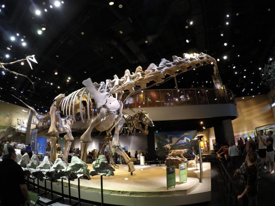 Los dinosaurios en el primer nivel