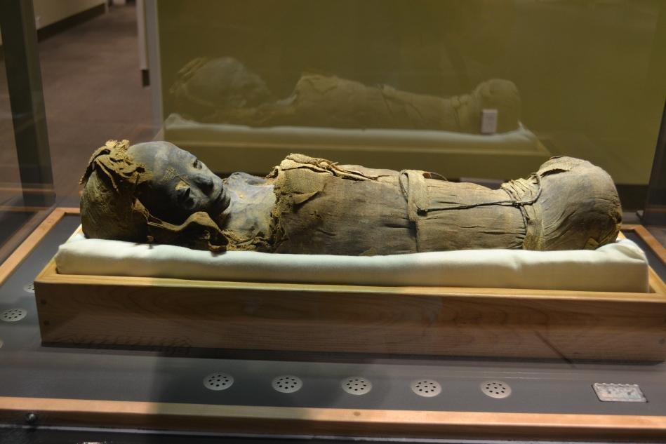Una momia bien conservada en el museo