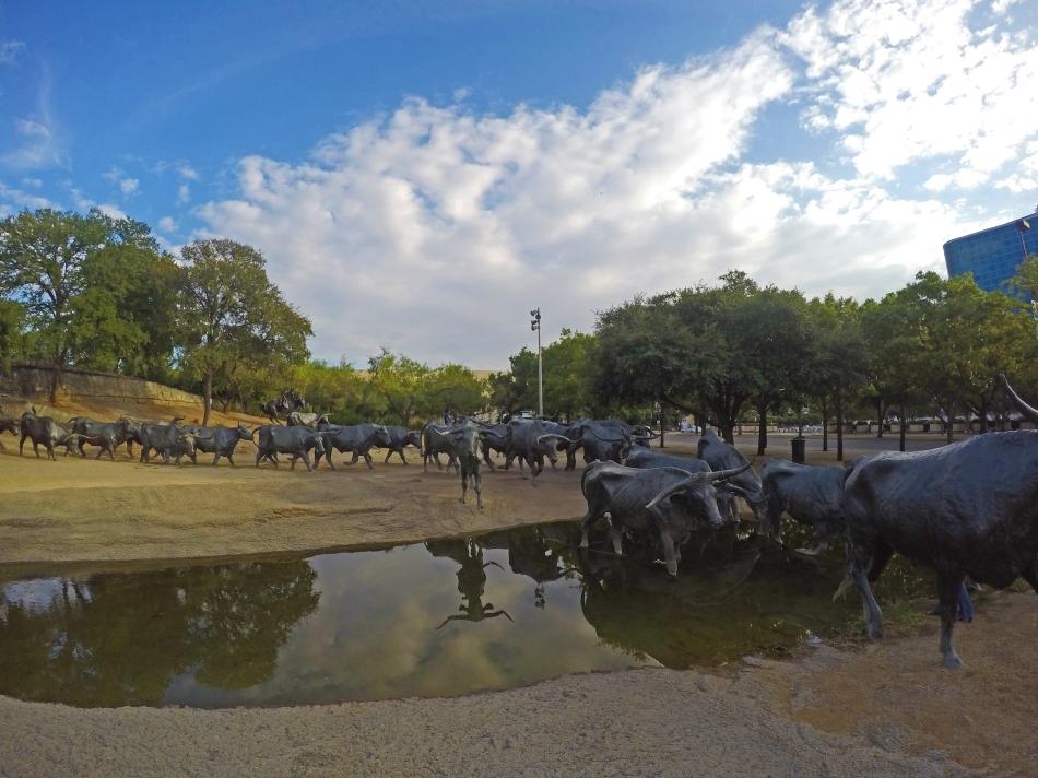 Los toros en Pioneer Plaza